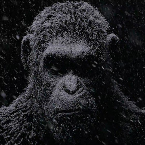 War for the Planet of the Apes NYCC SpecialFeature