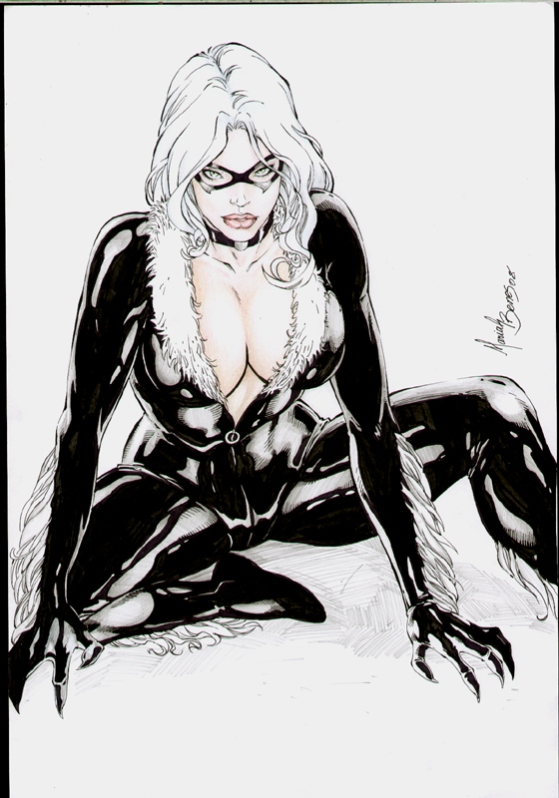 black-cat-fan-art-15