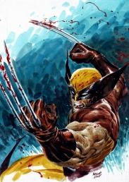 Ardian Syaf Wolverine Collage 5