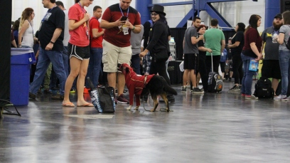 Comicpalooza 2017 - Flash Dog